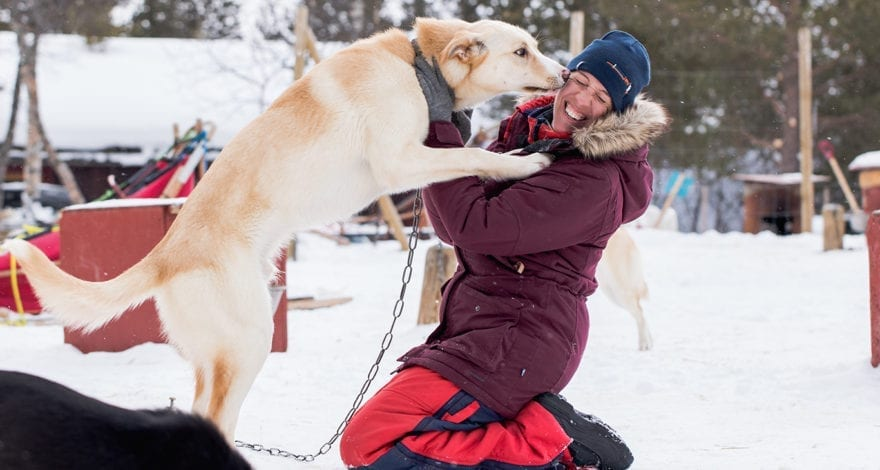 Kristen Kellogg of Borderfree Travels with one of the the sled dogs at the Husky Point Røros Kennel. Foto: Borderfree Travels